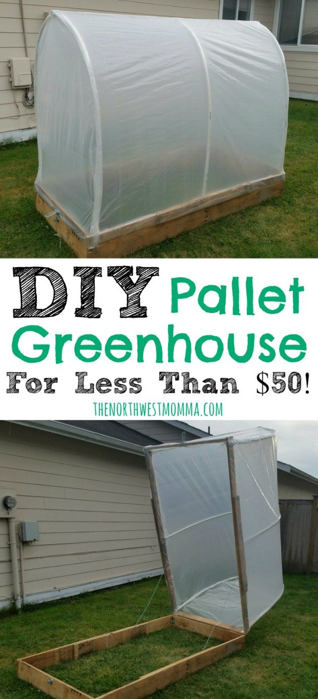 DIY pallet greenhouse for less than $50!