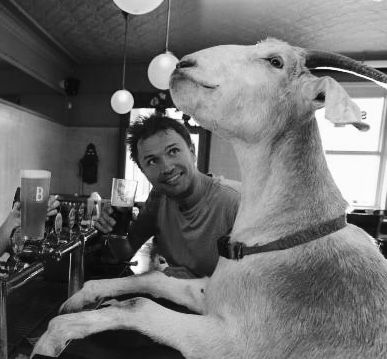 Gary the Goat and Jimbo Bazoobi were an Australian comedy duo who performed in Australian towns, but mostly through Facebook and YouTube. Gary the Goat and Jimbo often push boundaries, and has been in trouble with councils and the police. In August 2016, Gary had terminal arthritis in his legs. In November, Gary's toe was successfully amputated. Jimbo announced that Gary had to be euthanised, after being diagnosed with a bleed from an acute heart tumor.  He was 6.