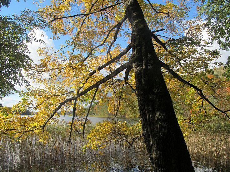 Jesienne krajobrazy na szlaku.  www.it.mragowo.pl