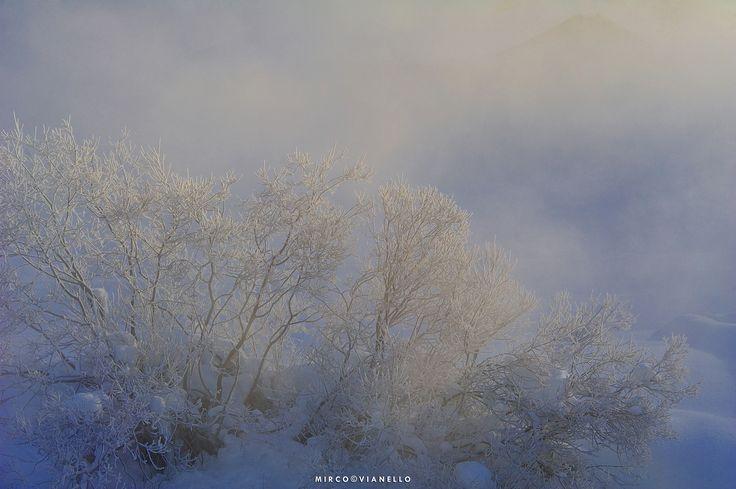 Wintercolors - Livigno -20°C close the river.