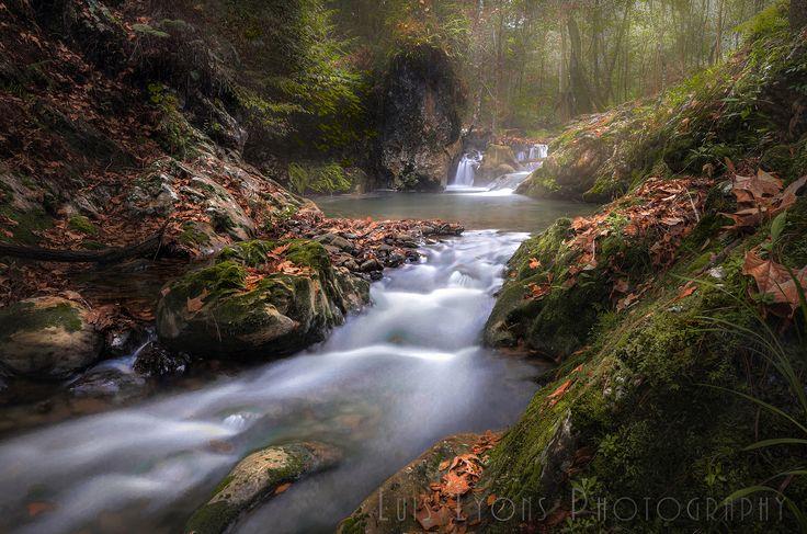 Sierra Negra Autumn Creek - Sierra Negra Autumn Creek, Sierra Negra de Puebla, México.
