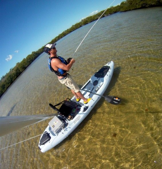 239 Best Images About Kayak Fishing On Pinterest Hobie