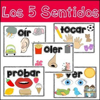Five Senses in Spanish (Los cinco sentidos)