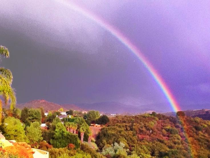 ... top views rainbow shot layered shot rainbow dash drink double rainbow