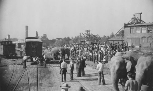 Watching the elephants and men unload the trains for the Ringling Bros. and Barnum & Bailey Circus. Atlanta, Georgia - Oct. 18, 1942