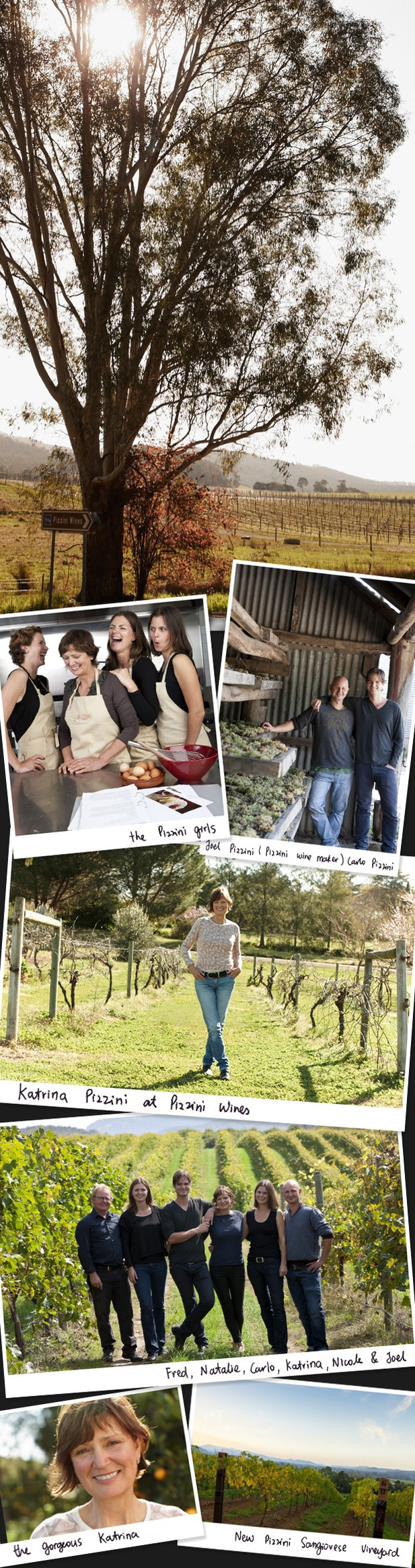 Katrina Pizzini - wine maker chef ''You don't just marry an Italian, you marry the whole family.'' To read full interview go to www.anaffairwithitaly.com