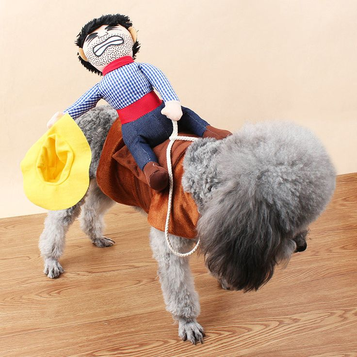 New Hot Sale Riding Horse Dog Costume Novelty Funny Halloween Party Pet Dog Costume Large Dog Clothes Cowboy Dog Clothing S-XL