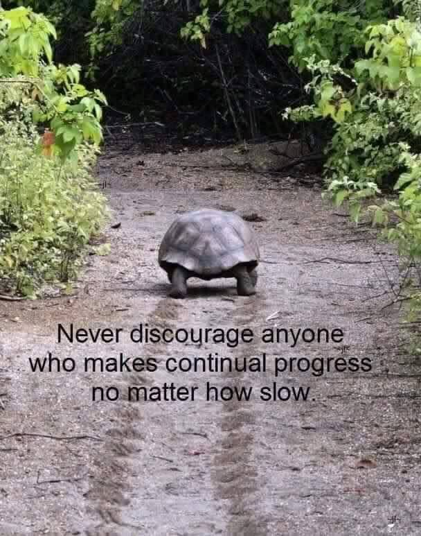 Never discourage anyone who makes continual progress no matter how slow. …
