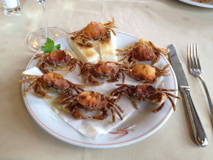 MOLECHE FRITTE tipiche della laguna veneta. In autunno e primavera i granchi cambiano il carapace che viene sostituita dalla nuova più morbida. Vengono messi vivi in uova sbattute poi si infarinano e friggono, salate e servite con polenta bianca #ItalianFood #cucinaitaliana #piattiitaliani #piattitipici #piattitipiciregionali #Gourmet #Foodie #FoodBlogger #CarnevaliLuigi  https://www.facebook.com/terreLAMBRUSCO/?fref=ts https://twitter.com/luigicarnevali…
