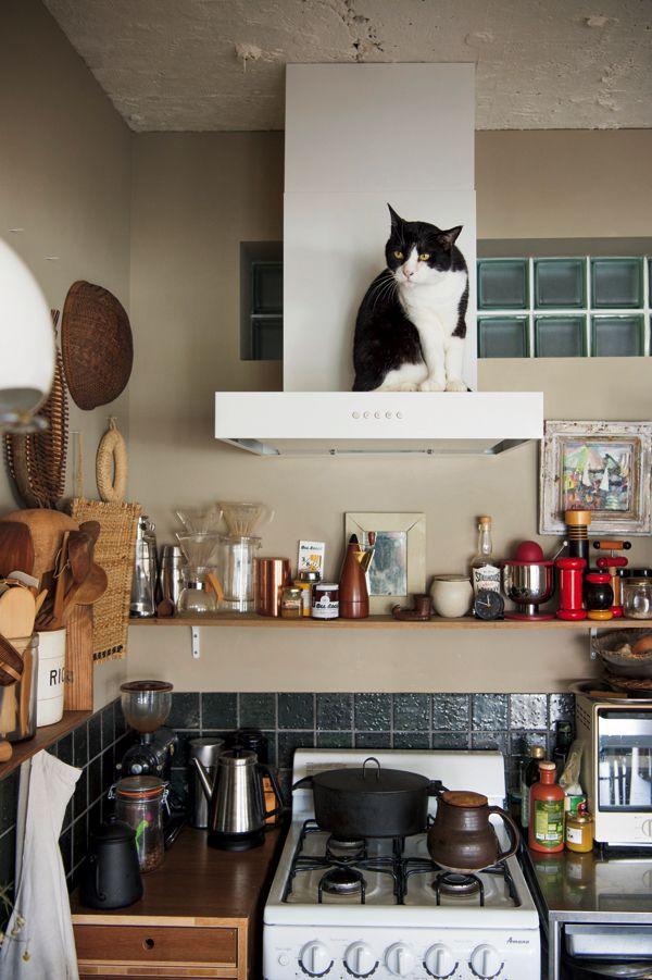 わが家でも真似したい 猫が楽しいdiy インテリア ページ 3 クロワッサン オンライン インテリア キッチンアイデア 石井佳苗