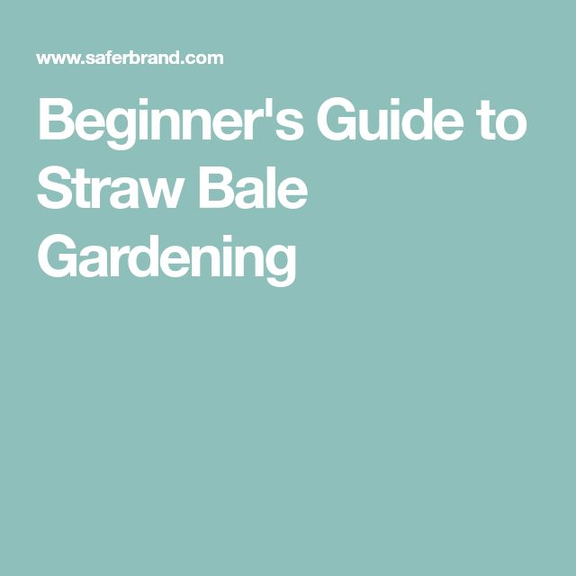Beginner's Guide to Straw Bale Gardening