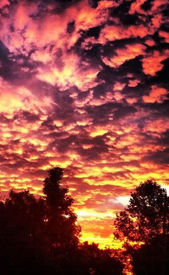 Summer sunset over the Stellenbosch sky...