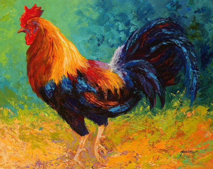 images of rooster painted with acrylics | Mr Big - Rooster Painting by Marion Rose - Mr Big - Rooster Fine Art ...