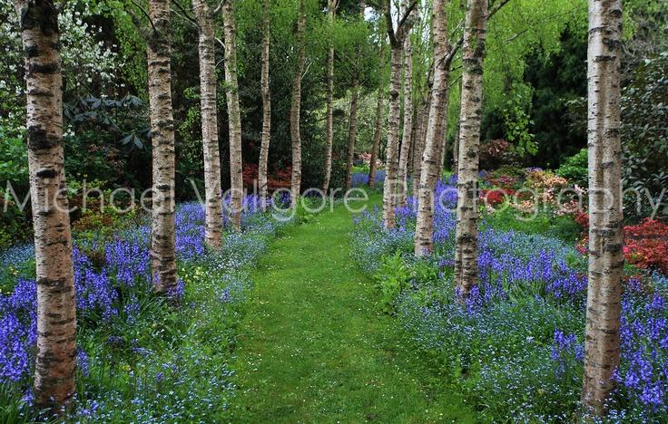 Allendale Gardens Tasmania