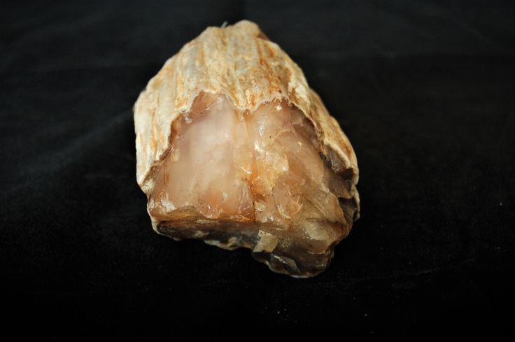 Petrified Wood Agate Natural Rough 380 Gr