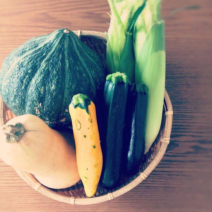 今週の採れたて野菜  #畑から届いたばかりの新鮮野菜 これからスープの仕込み 毎週収穫出来る野菜は行ってみないと分からない今日はこれがあるよというおじさんの一声で野菜が決まりますそこからスープのレシピを考え仕込み何度か味をいったりきたり 今週はトウモロコシやロロン(カボチャ)が入手出来たのでどうしようかなあとワクワクしています  #新鮮野菜 #採れたて野菜 #スープ #ロロン #甘いトウモロコシ