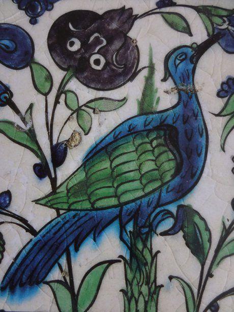Leighton-bird-web