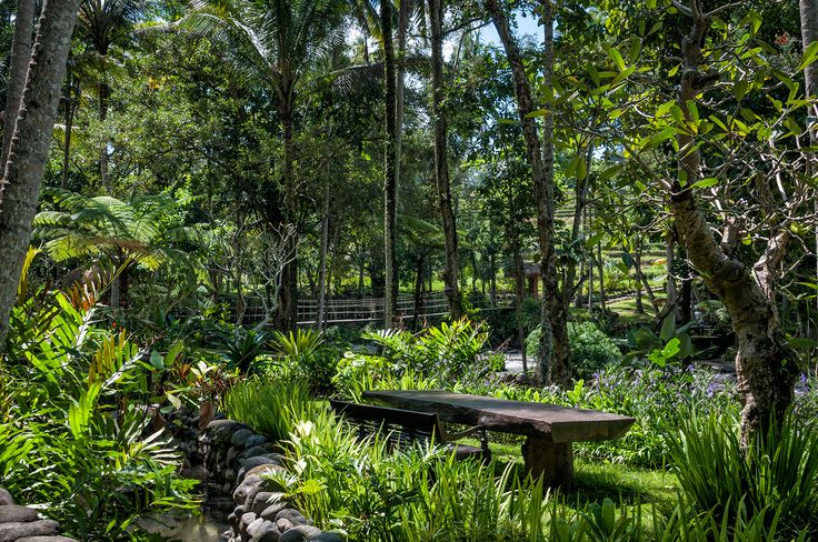 rain forest garden at Permata Ayung Private Estate, stay away from the island