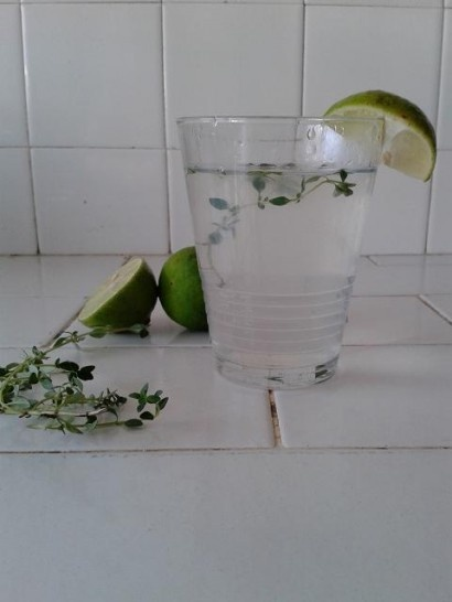 Lemon-Thyme Limeade | Recipe | Recipe Community, Tasty Kitchen and ...