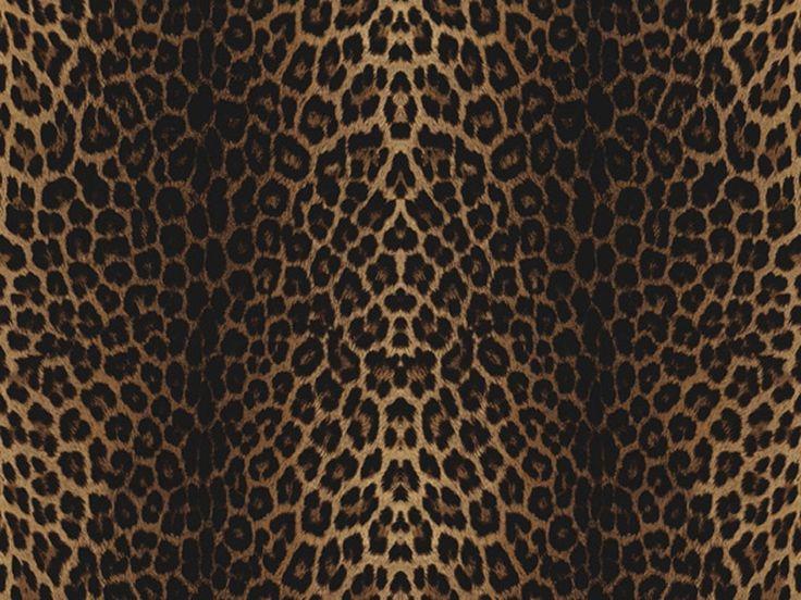 Messe und Event - EXPOLOOK bietet  viele Möglichkeiten der Gestaltung - Leopard