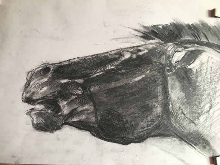 Horse. Charcoal, pencil.