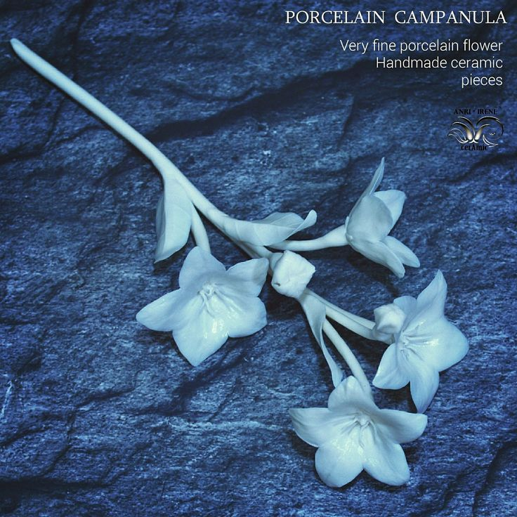 Ceramic flower campanula. White porcelain. Handbuilt ceramics. Floral ceramics.