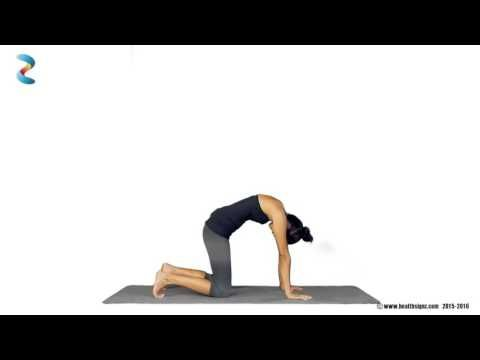Yoga For PCOS - Cat Cow Pose
