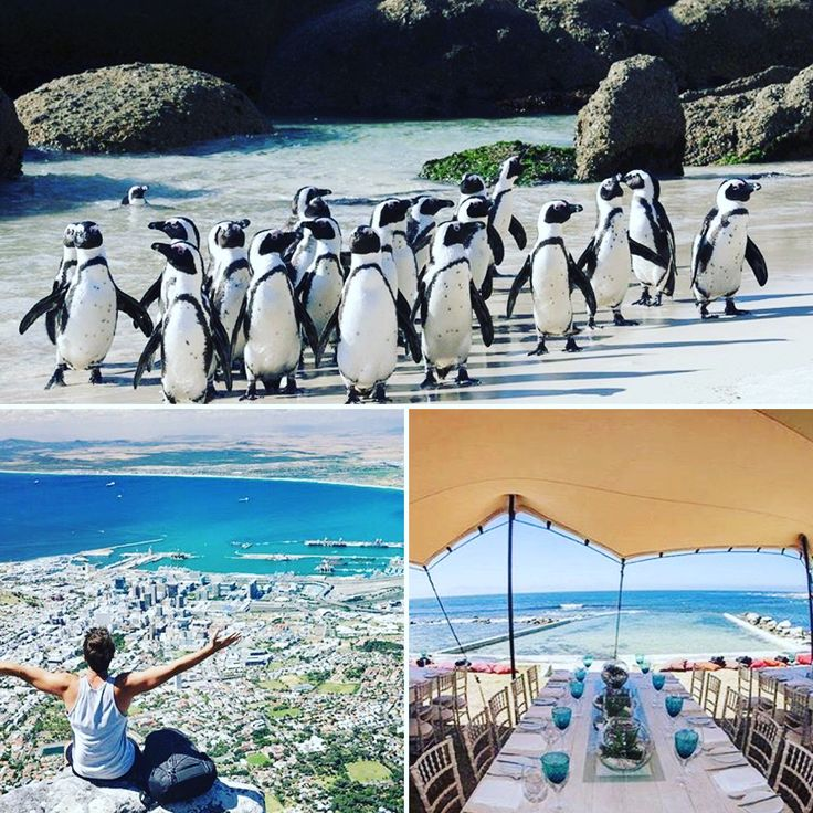 Been seeing posts all day of team members jetting off to their all 5* all expenses paid trip to Cape Town! Wishing them all a safe flight and a fantastic trip ✈️ hopefully I will be joining you on the next one! 💪🏻 want to join us? Drop me a message 💌