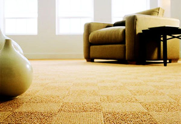Vacuum regularly Begin with a clean filter or bag Vacuum at the right speed Use walk-off mats