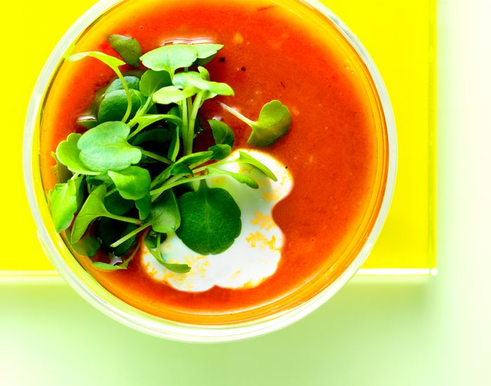 En dejlig tomatsuppe som holder dig varm, og som er krydret med lidt chili og flødepeberrod.