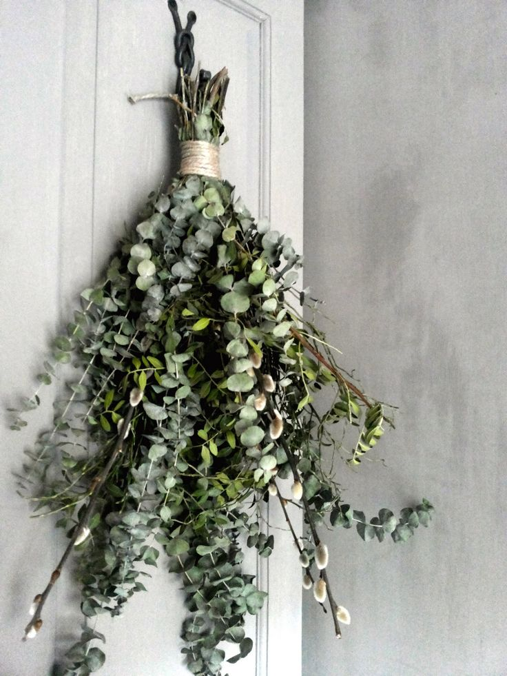 Eucalyptus hanging in the shower: the best way to start your day
