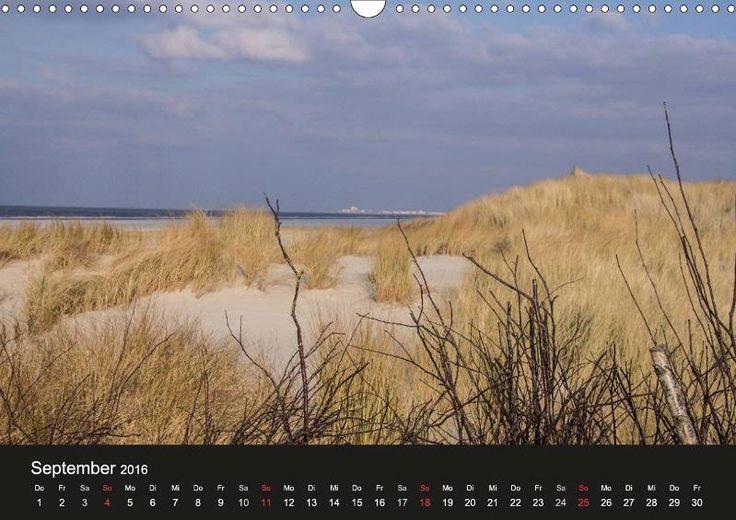 Juist Nordsee Fotografie Kalender Juistrausch 2016 September - CALVENDO #juistrausch #juist #töwerland #zauberland #strand #beach #dünen #dünengras #nordsee #kalender #september