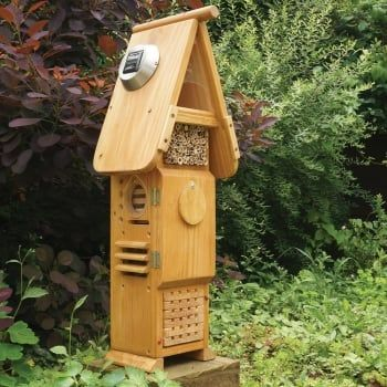 This is a truly interactive habitat that provides a range of valuable habitats for the study of a variety of beneficial insects like moths, solitary bees, ladybirds etc.