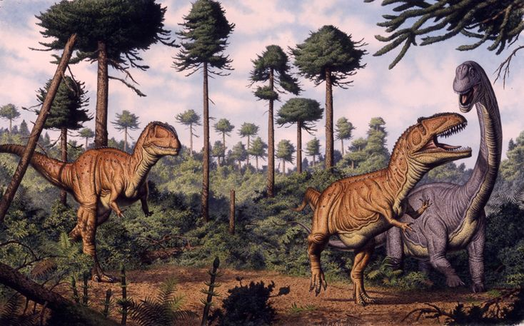 Giganotosaurus and Sauropod byBob Walters and Tess Kissinger