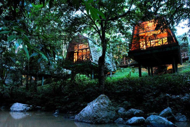 Borneo Safari - Best Borneo Lodges to visit on your Borneo Holiday | Wildlife Trails