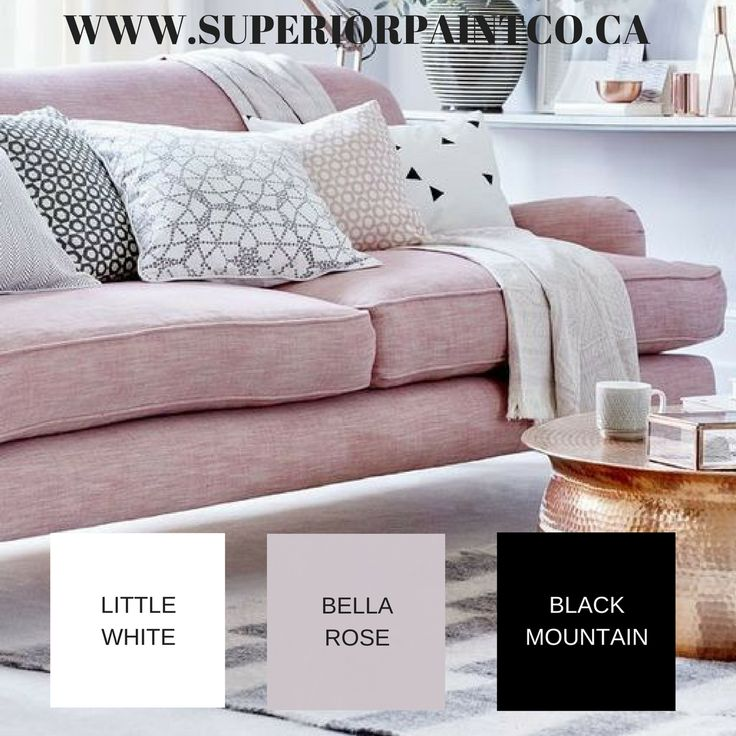 Blush Interiors  Superior Paint Co. Inspired Spaces   Paring Little White  And Black Mountain