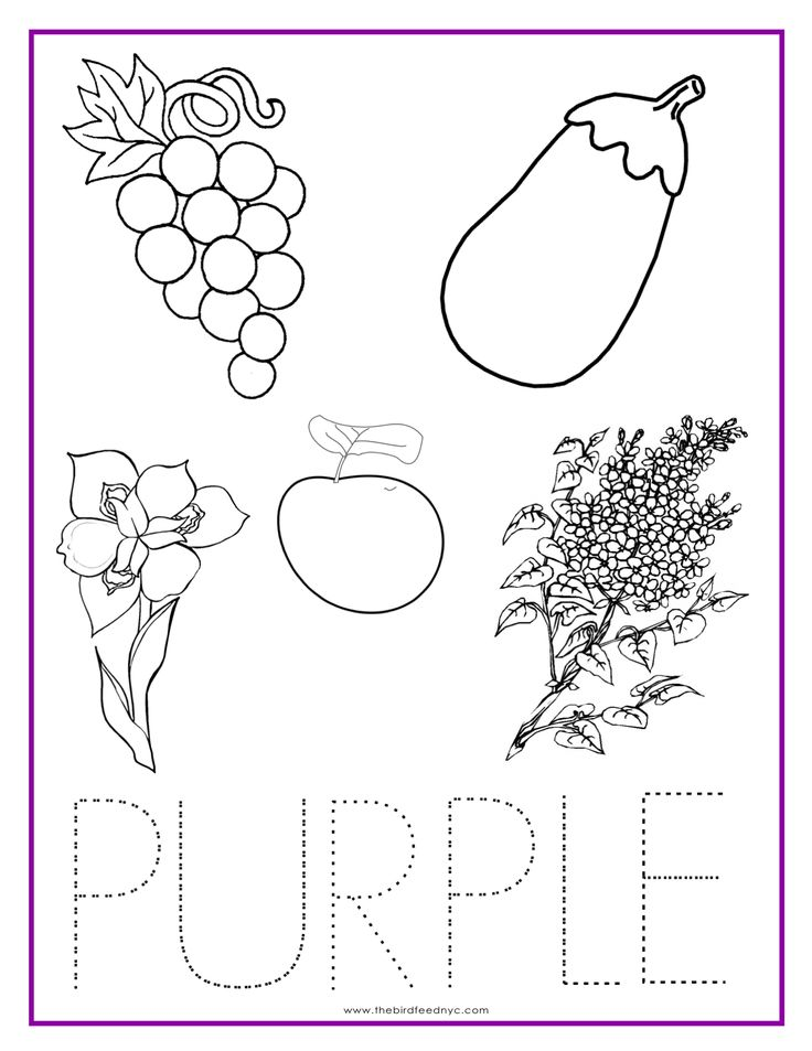 PURPLE Color Activity Sheet Colors Pinterest Color activities