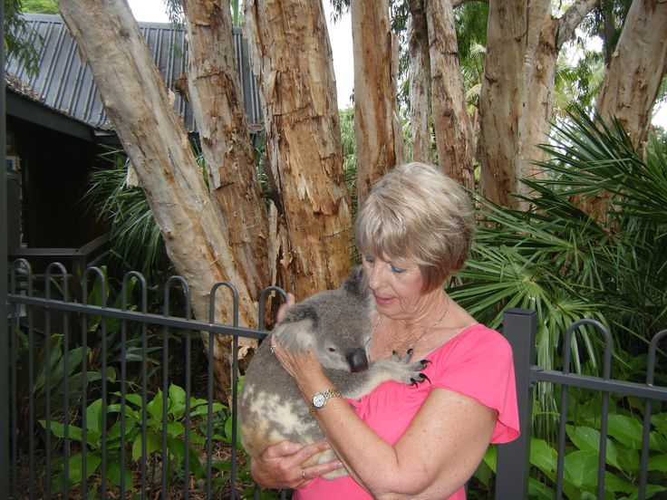 a very special moment holding a Koala