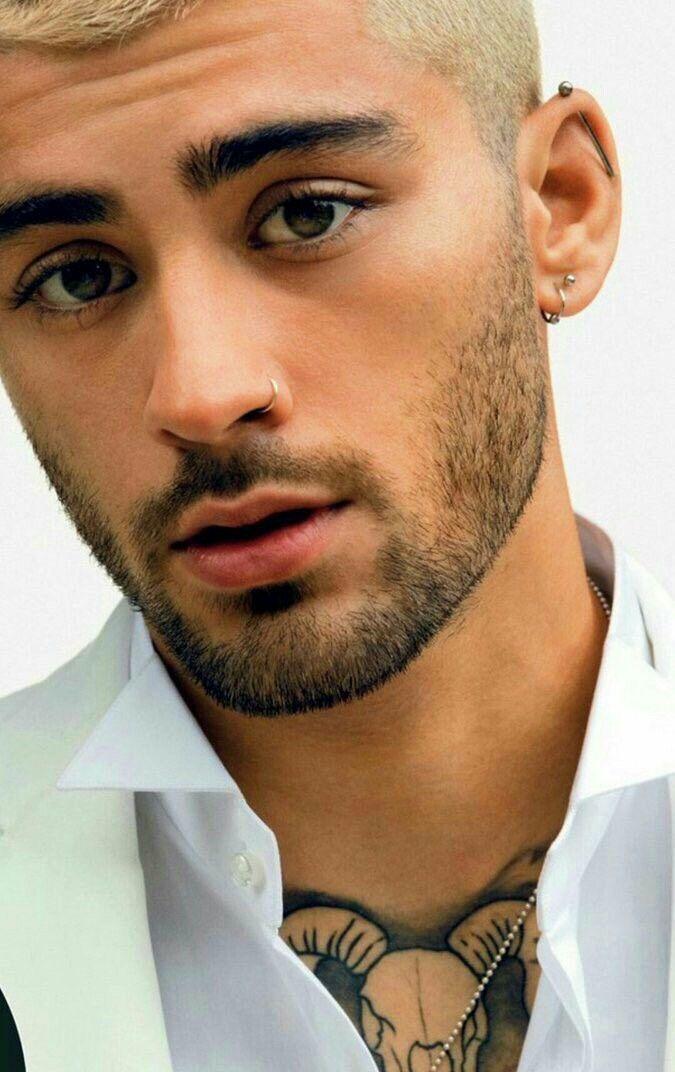 Zayn Pinterest Rosh Guys With Nose Piercings Guys Ear Piercings Nose Piercing