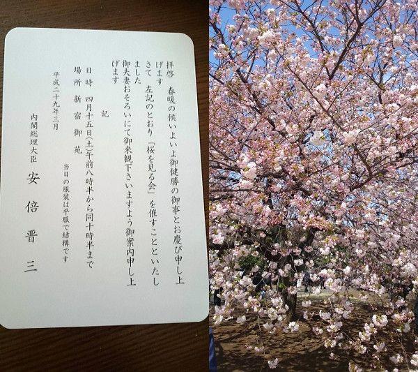 """「総理主催""""桜を見る会""""」へ♪ソメイヨシノの花吹雪が舞う新宿御苑 の画像 KOKOROメソッド~World~西川心は""""希望""""と""""理想""""をウエブサイトで描き創造することからスタートする。"""
