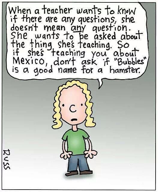 Pin by Mary Newton on That's so me! | Early childhood ... |Early Childhood Education Humor