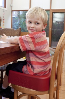 Toosh Coosh Kids' Support Seats are the kid-friendly, parent friendly, restaurant friendly solution that will change you family mealtimes forever!