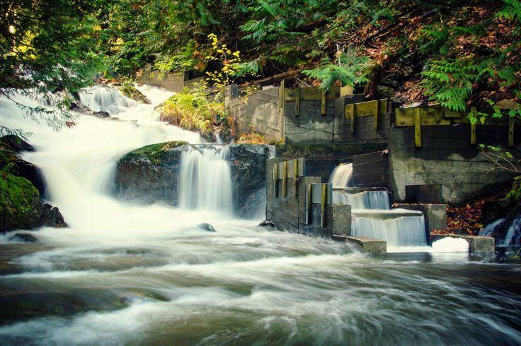 Остров Боуэн Bowen Island — Между озером и деревней есть водопад — одноименный с известным водопадом в районе городка Хоуп — Bridal Veil Falls (Водопад Фата Невесты). Поскольку устье реки в районе озера Киларни явлется еще одним место нереста лосося, а на нем возвели плотину (или даже две), то на пути хода лосося установили «лестницы» — каналы с менее сложным течением. Хотя лосось должен приходить сюда как раз в октябре — ноябре, ни одной рыбины видно не было.