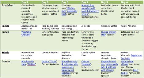 wild rose detox meal plan pdf