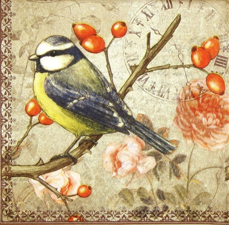 4 x Single Luxury Paper Napkins for Decoupage and Craft Vintage Blue Tit | eBay