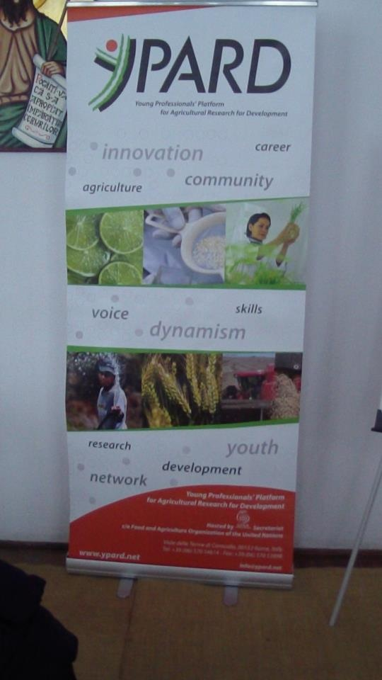 Ypard Roll-up