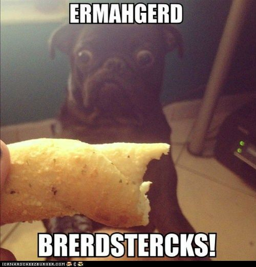 Ermahgerd!Animal Pics, Animal Baby, Funny Dogs, Funny Animal Pictures, Funny Face, Funny Stories, Funny Pugs, Funny Photos, Funny Puppies