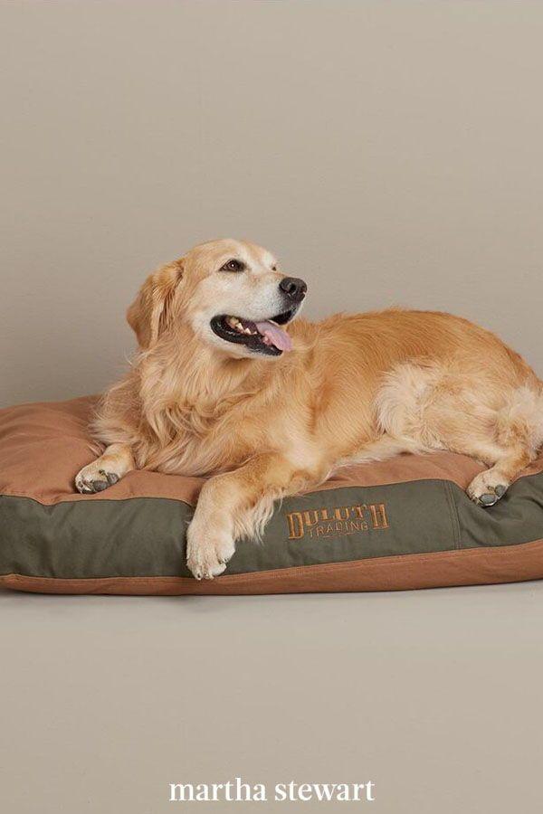 Fire Hose Dog Bed : Indestructible, Indestructable, Orthopedic