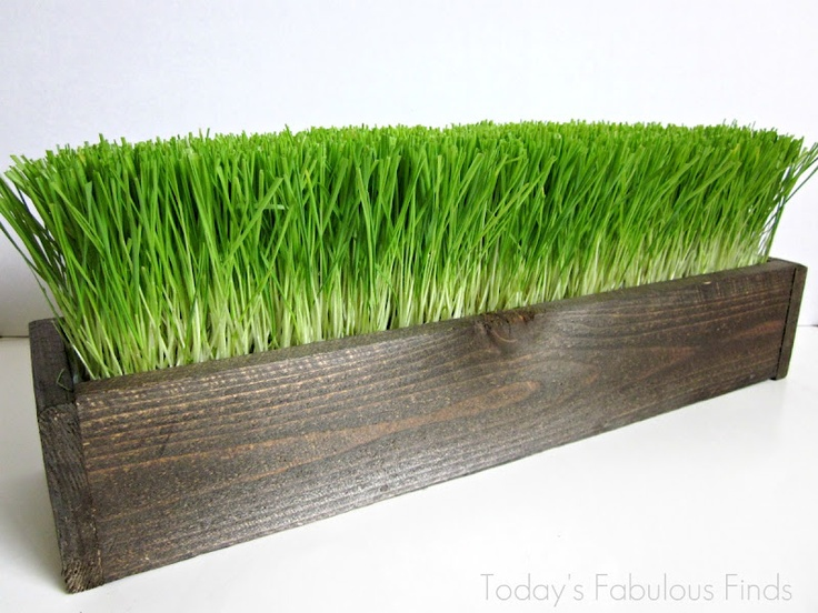 Today's Fabulous Finds: Three Easter Wheat Grass Centerpieces and an Update