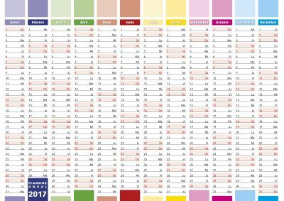 2017 Year calendar in spanish. Elegant annual planner for year 2017.